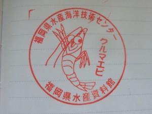 CIMG6928