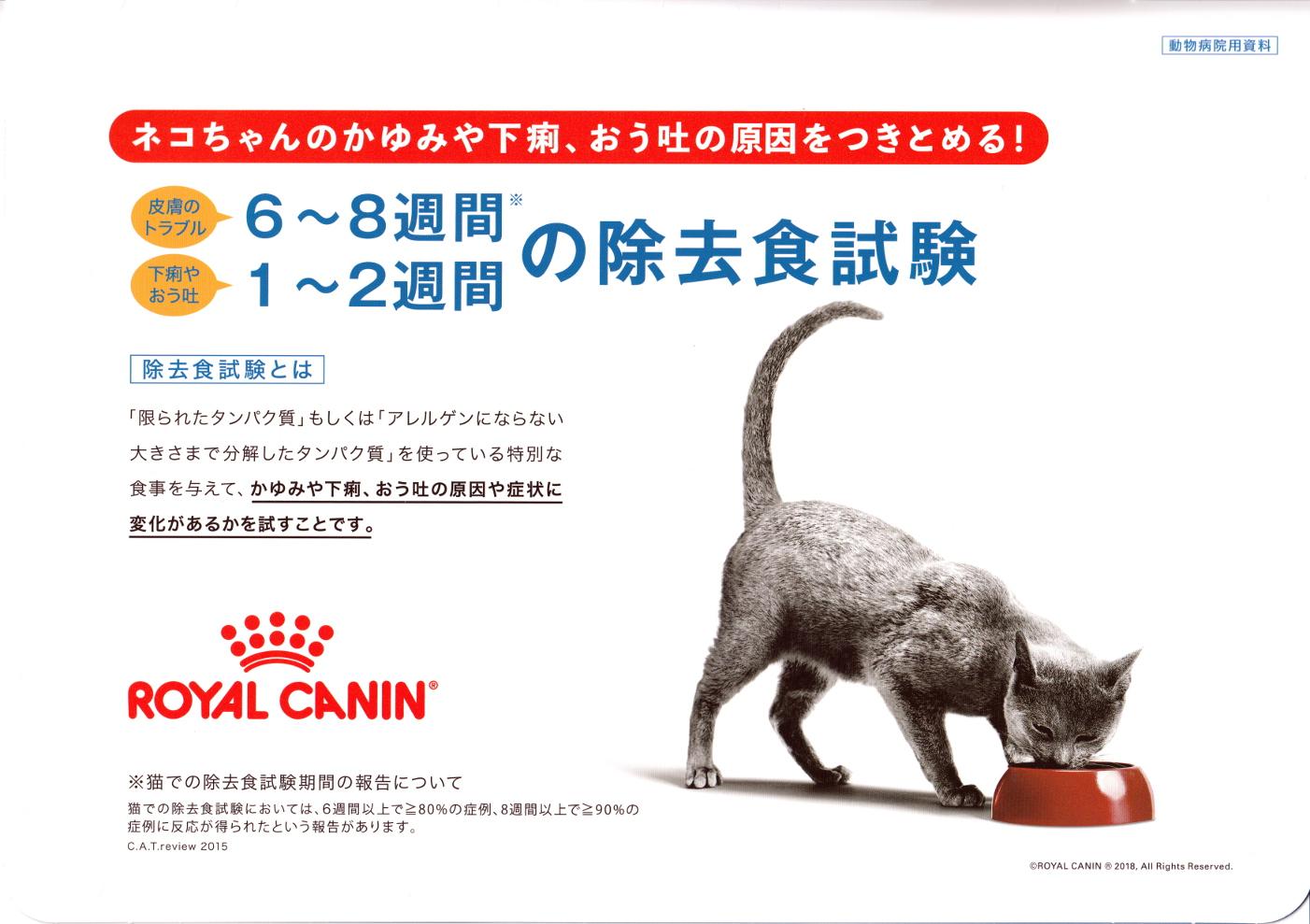 猫の除去食試験 アミノペプチドフォーミュラ