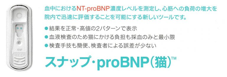 猫用スナップproBNP(心臓バイオマーカー)