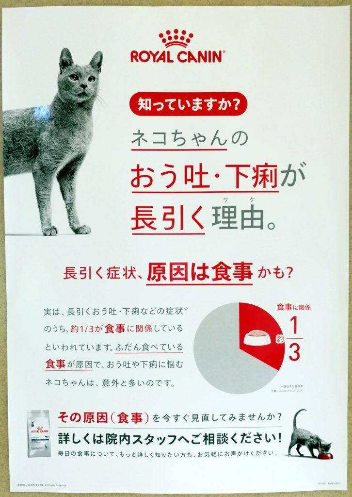 猫の嘔吐下痢の理由 食物アレルギー