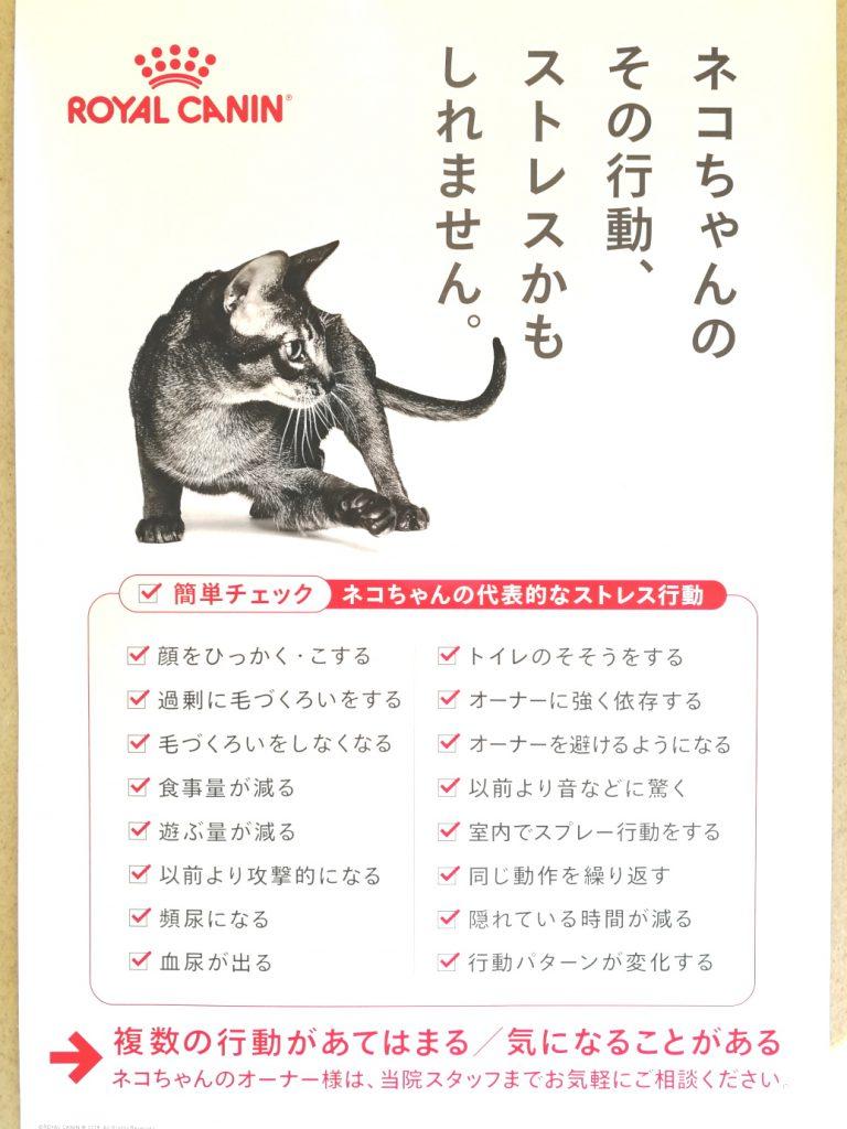 猫ちゃんのストレス ロイヤルカナン pHコントロール+CLT